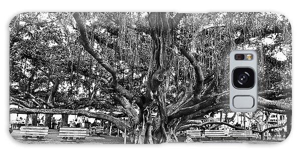 Town Square Galaxy Case - Banyan Tree by Scott Pellegrin