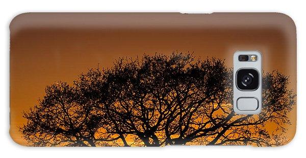 Baobab Galaxy Case by Davorin Mance