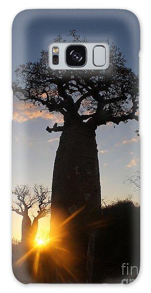baobab from Madagascar 6 Galaxy Case by Rudi Prott