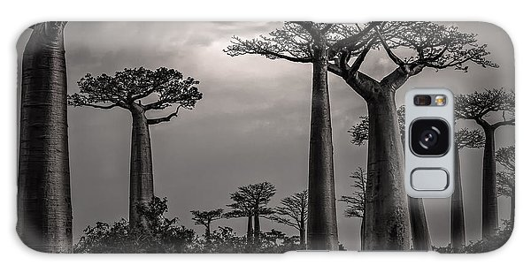 Baobab Highway Galaxy Case by Linda Villers