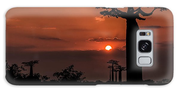 Baobab Sunrise Galaxy Case by Linda Villers