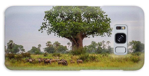 Baobao Tree Galaxy Case