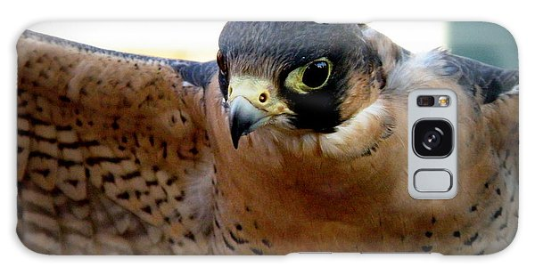 Barbary Falcon Wings Stretched Galaxy Case