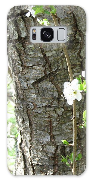 Bark And Blossoms Galaxy Case