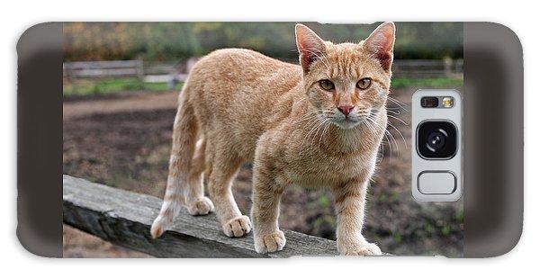 Barn Cat Galaxy S8 Case
