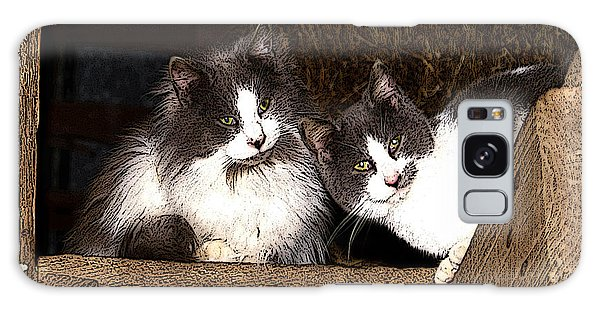 Barn Cats Galaxy Case