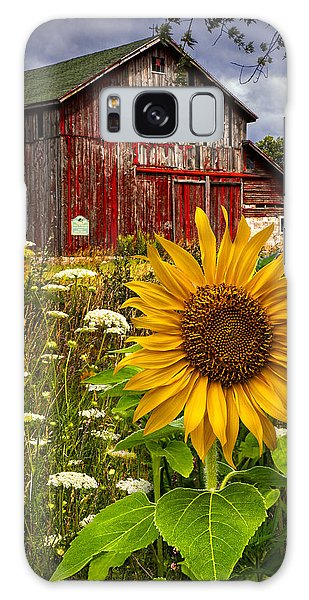 Blossoms Galaxy Case - Barn Meadow Flowers by Debra and Dave Vanderlaan