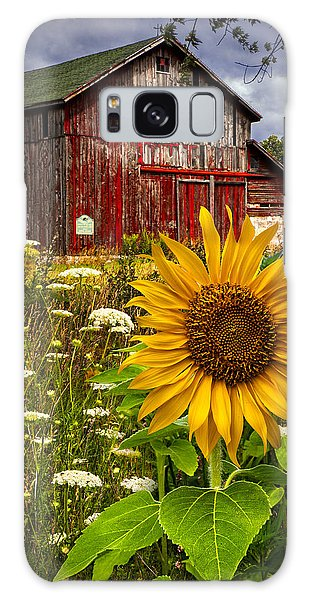 Cloud Galaxy Case - Barn Meadow Flowers by Debra and Dave Vanderlaan