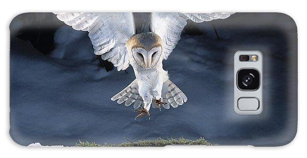 Barn Owl Landing Galaxy Case