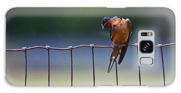 Barn Swallow Galaxy Case by Mark Alder