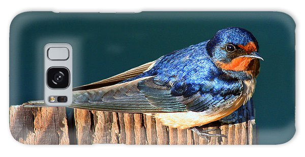 Barn Swallow Perching Galaxy Case