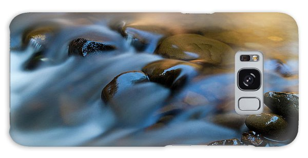 Ecosystem Galaxy Case - Barnes Creek, Olympic National Park by Art Wolfe