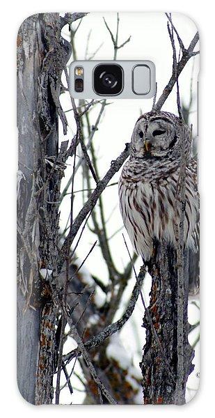 Barred Owl 2 Galaxy Case