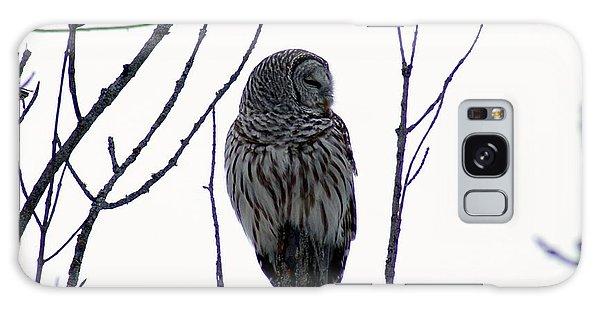 Barred Owl 3  Galaxy Case