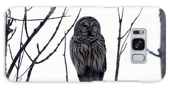 Barred Owl 4 Galaxy Case