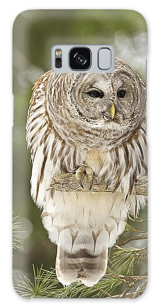 Barred Owl Hunting Galaxy Case