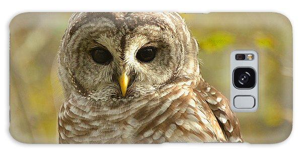 Barred Owl Galaxy Case by Nancy Landry