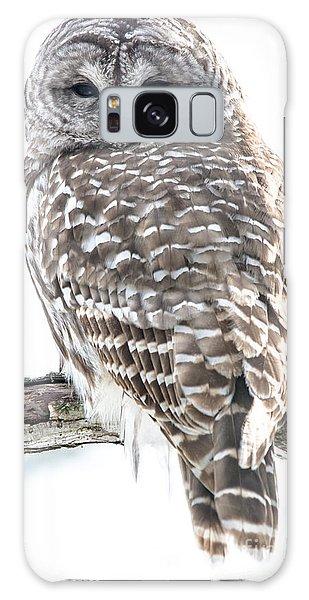 Galaxy Case - Barred Owl2 by Cheryl Baxter