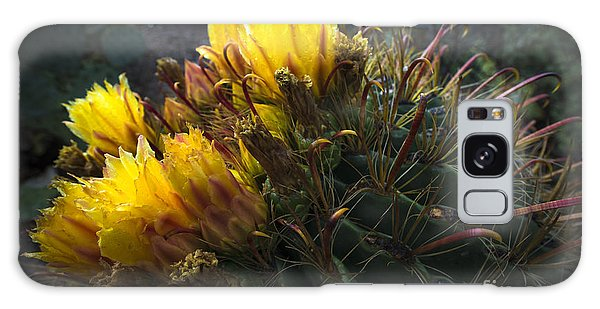 Barrel Cactus In Bloom 1 Galaxy Case