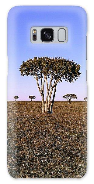 Barren Tree Galaxy Case