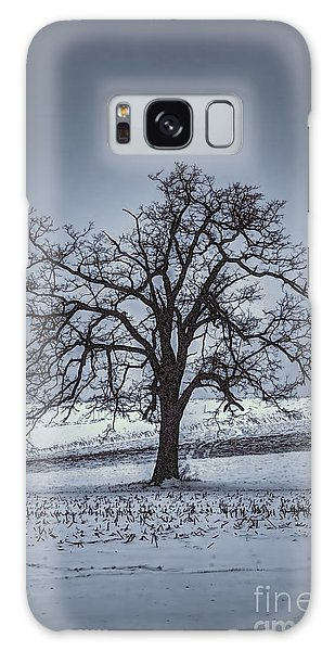 Galaxy Case featuring the photograph Barren Winter Scene With Tree by Dan Friend