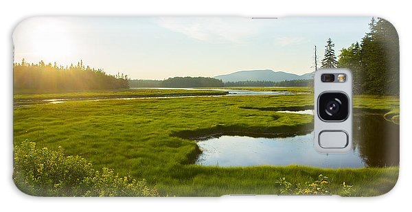 Bass Harbor Marsh At Dusk Galaxy Case