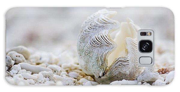 House Galaxy Case - Beach Clam by Sean Davey