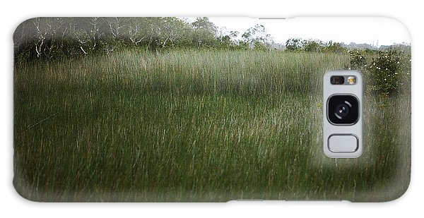 Beach Grass Galaxy Case by Linde Townsend