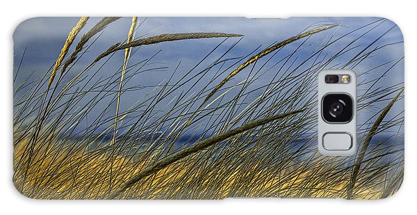 Beach Grass On A Sand Dune At Glen Arbor Michigan Galaxy Case