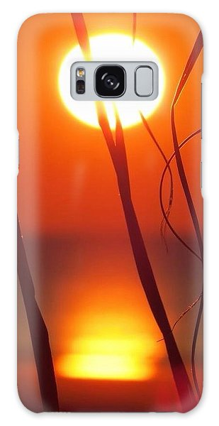 Beach Grass Sunrise Galaxy Case by Nikki McInnes