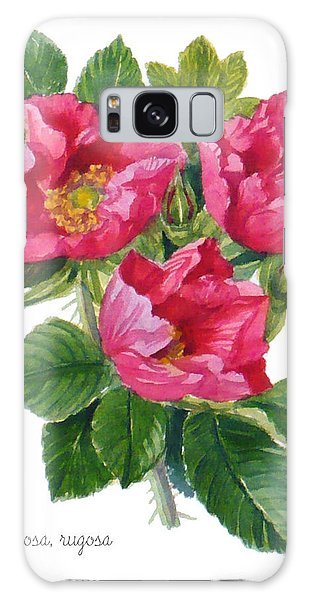 Beach Roses -  Rosa Rugosa Galaxy Case by Janet  Zeh