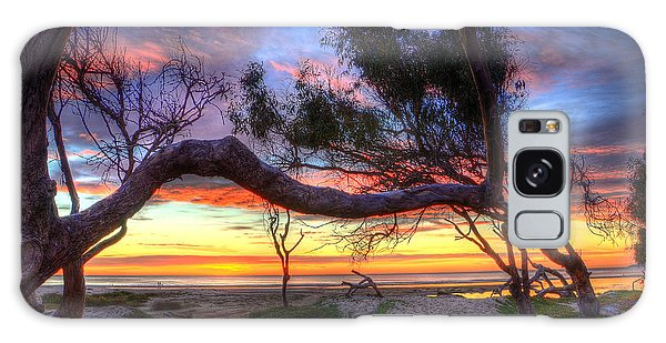 Beach Tree Sunset View Galaxy Case