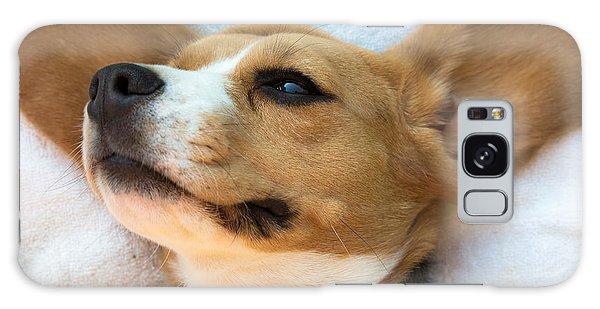 Beagles Dreams Galaxy Case