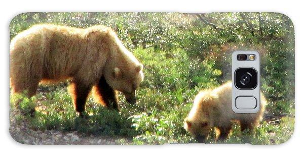 Bear And Cub At Denali Galaxy Case