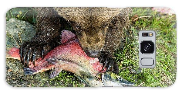 Grizzly Bears Galaxy Case - Bear Cub Eating Salmon by Joe Klementovich