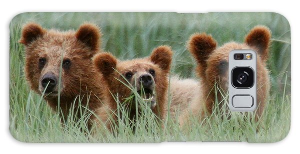 Bear Cubs Peeking Out Galaxy Case
