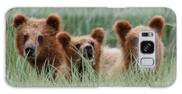 Bear Cubs Peeking Out Galaxy Case by Myrna Bradshaw