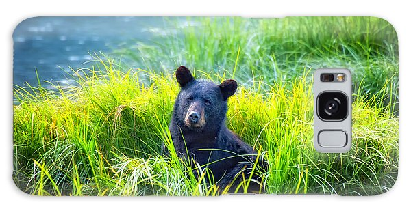 Bear Grass Galaxy Case