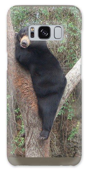 Bear In Tree   Galaxy Case