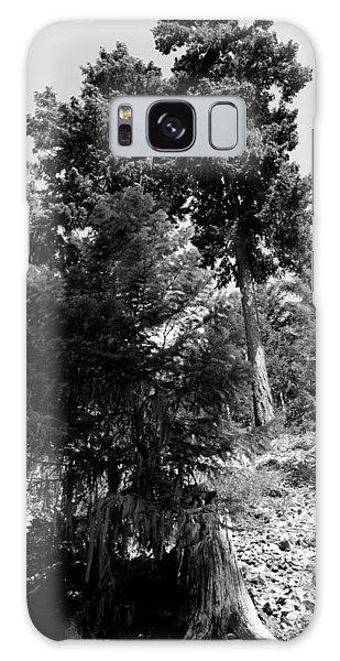 Bearded Trees - Whistler Galaxy Case by Amanda Holmes Tzafrir