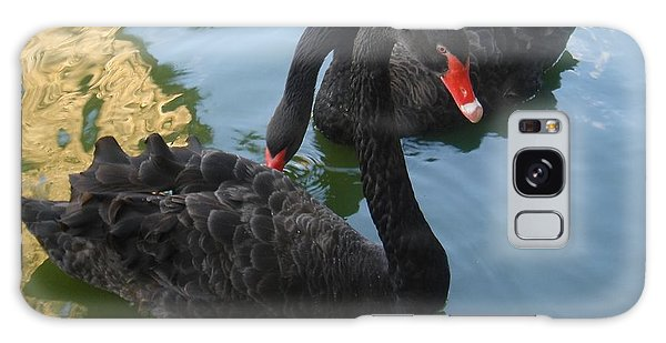 Beautiful Black Swans Galaxy Case by Carla Carson