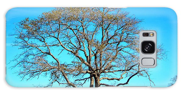 Beautiful Branching Galaxy Case by Debra Martz