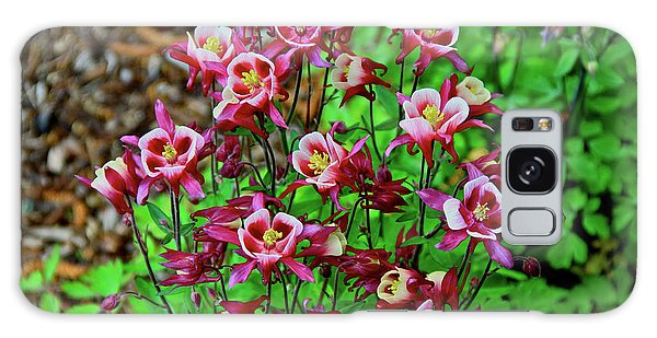 Beautiful Columbine   Galaxy Case