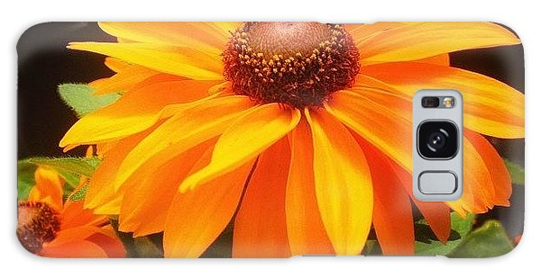 Beautiful Galaxy Case - Beautiful Flower #iphone5 #instagram by Scott Pellegrin