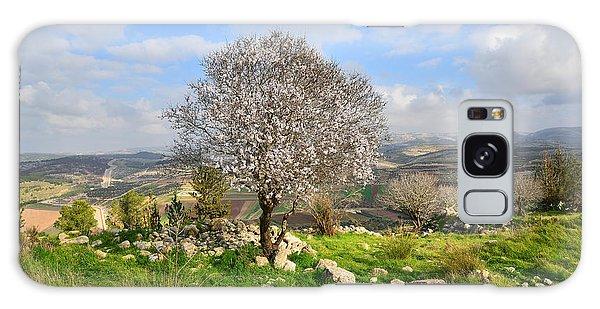 Beautiful Flowering Almond Tree Galaxy Case