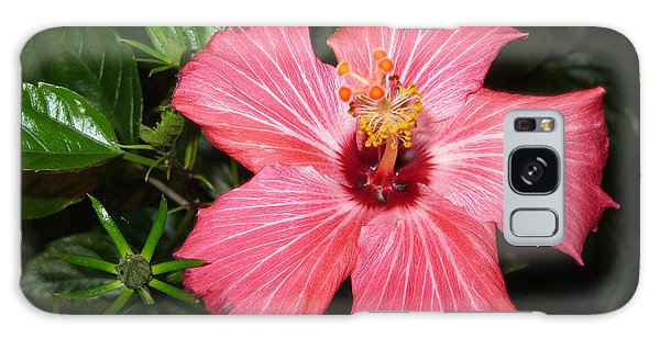 Beautiful Hibiscus Galaxy Case