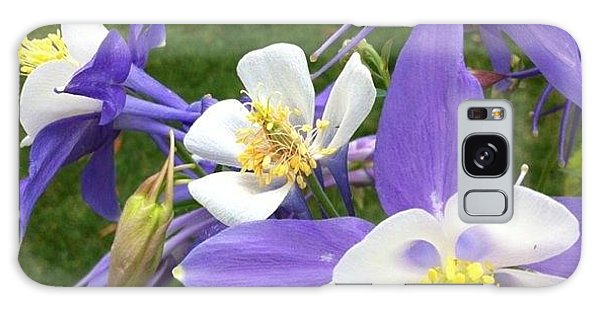 Florals Galaxy Case - Beautiful Light Hues by Portraits By NC
