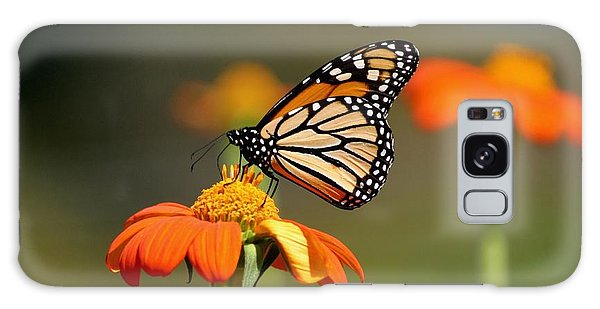 Beautiful Monarch Galaxy Case by Living Color Photography Lorraine Lynch