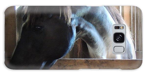 beautiful Niijjii at Blue Horse Rescue Galaxy Case