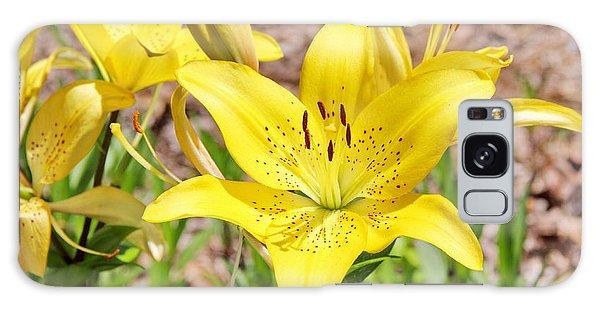 Beautiful Open Yellow Lily Galaxy Case